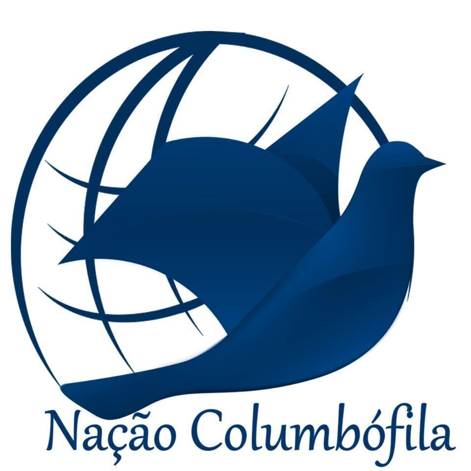 Braga NC logo