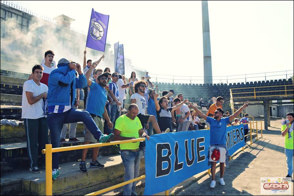 d-blue-bombers